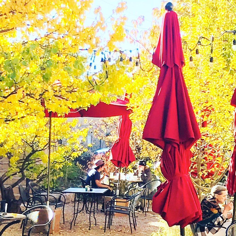 red umbrellas.JPG