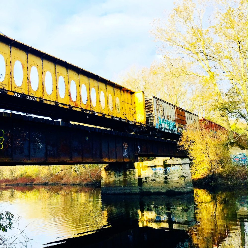 Morning train over trestle bridge, Charles River