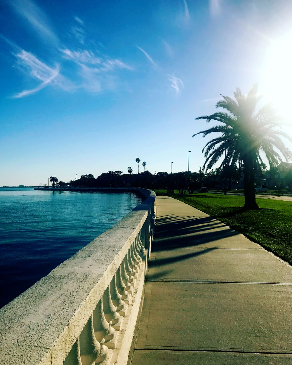 Bayshore Boulevard, Tampa