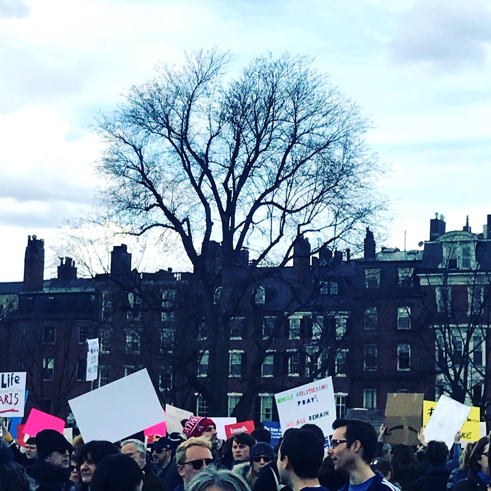 Boston Common, During the Rally