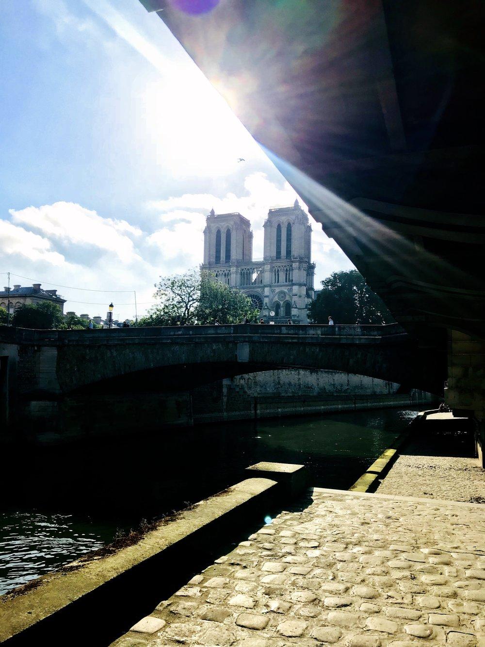 Notre Dame morning sun.JPG