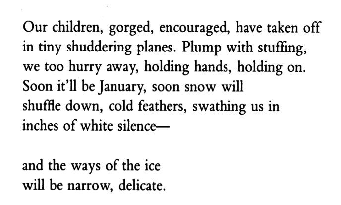 """Excerpt from """"After Thanksgiving,"""" by Sandra Gilbert. You can read the entire poem    here   ."""