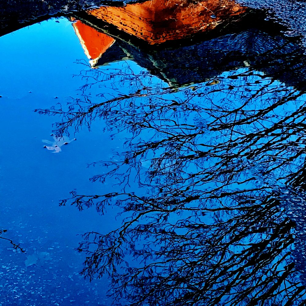 blue puddle red roof.JPG