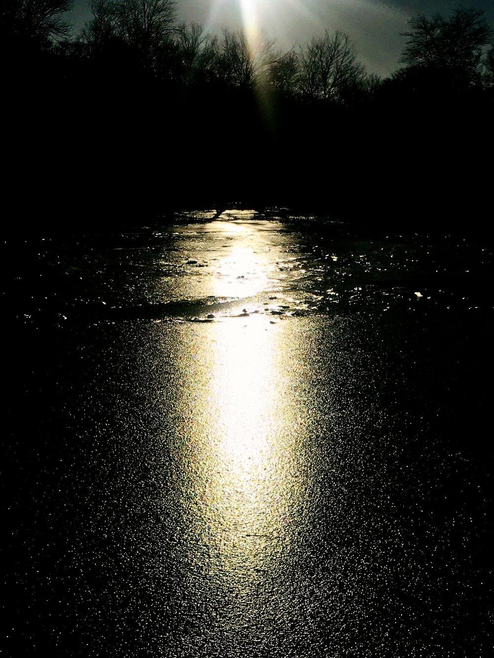 Charles River Winter Wake Up