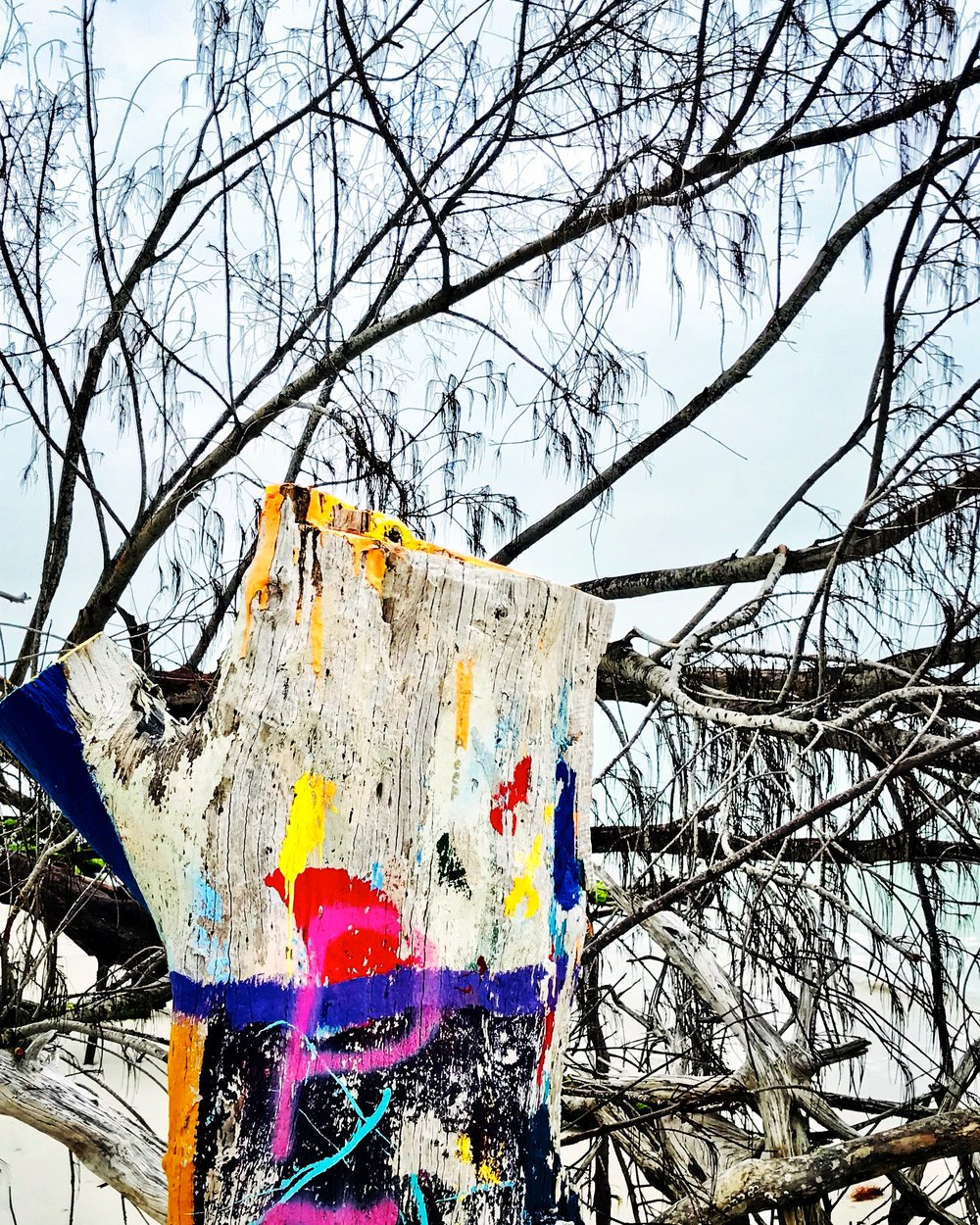 Painted stump, Beer Can Island
