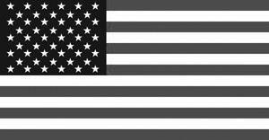 flag komp.png