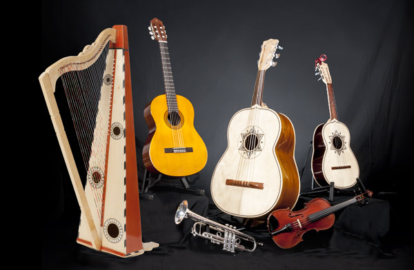 Trumpet, violin, arpa (harp), guitar, guitarrón (bass guitar) and vihuela (treble guitar)