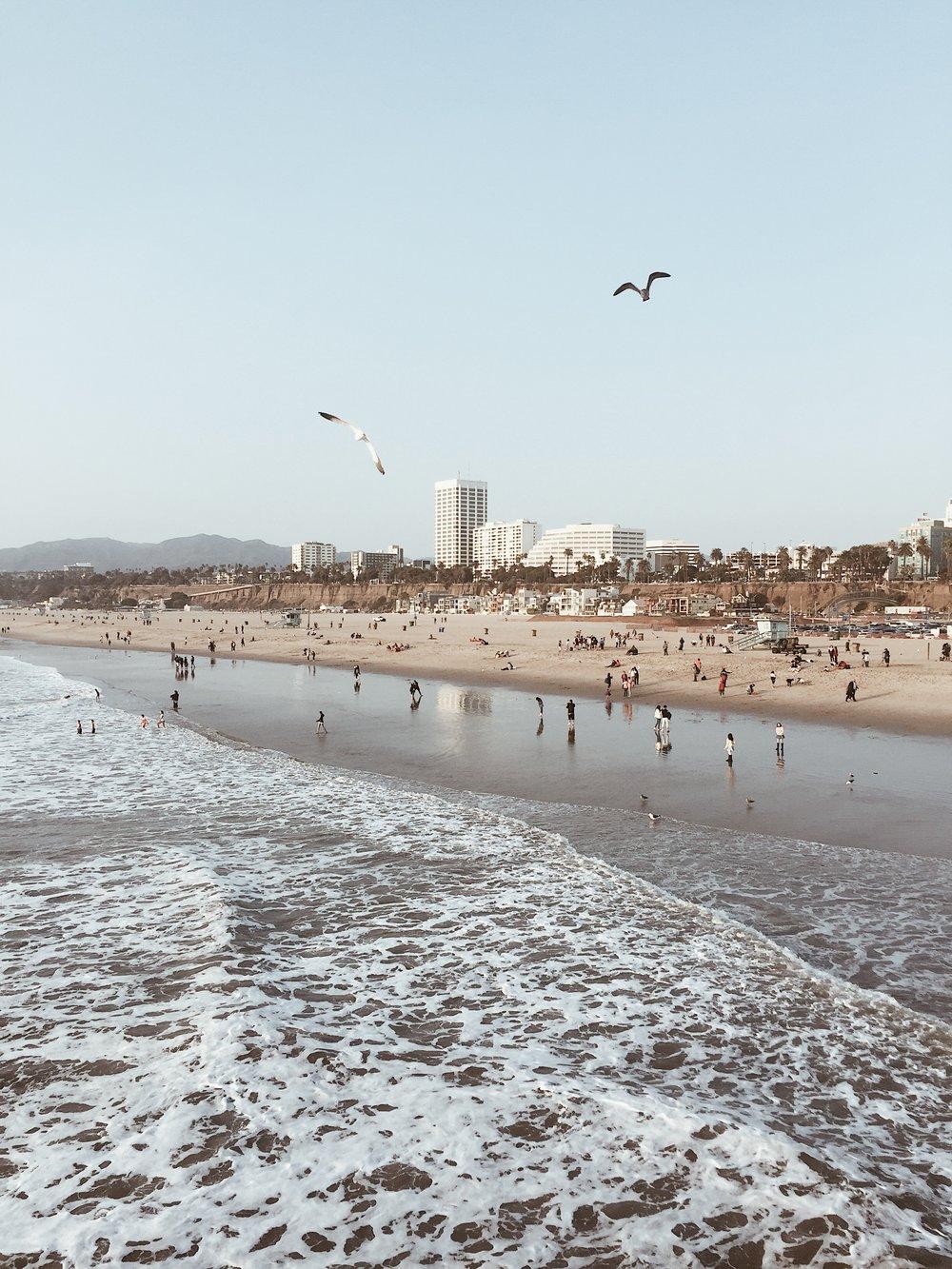 3. Visit Santa Monica Pier -