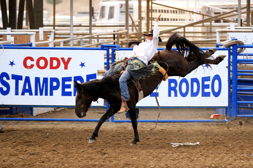 LB2012.08.07.rodeo.jpg