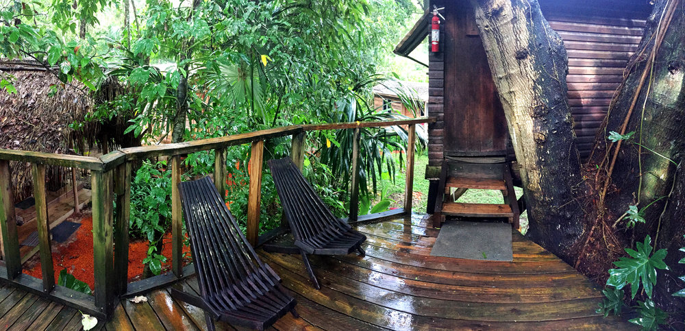 Our treehouse at Parrot Nest Lodge