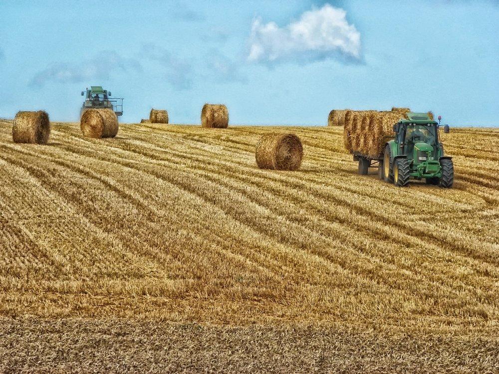 hay-bales-351213_1280.jpg