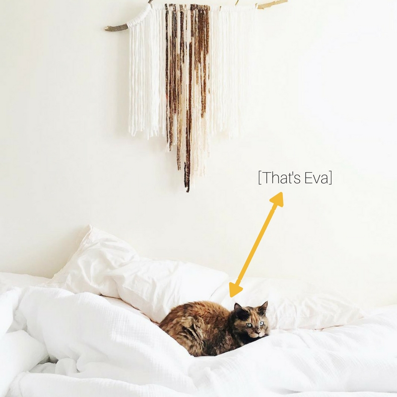 [That's Eva].jpg