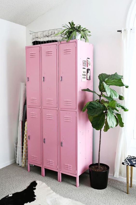 Pink Lockers and Fig Tree