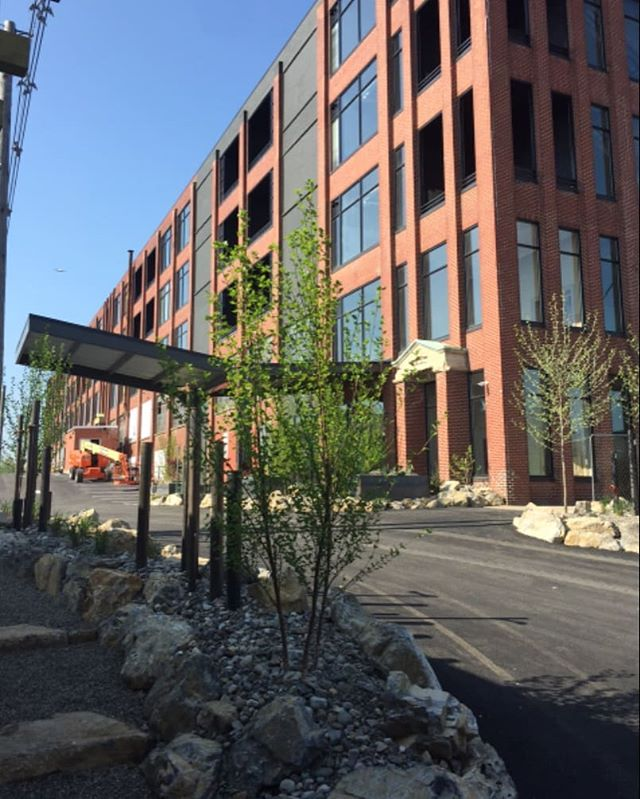 Longview Construction excited to complete Phase I construction on the 99 units at the Lofts @ Narrow located next to the VF Outlets property in West Reading, PA. THE LOFTS...move in...move up!  #LongviewConstruction #LongviewBuilds  #westreadingpa #berkscounty #wyomissingpa #ReadingPA #designbuild #apartmentliving #TrusttheProcess #subcontractors #Buildingrelationships #moveinmoveup