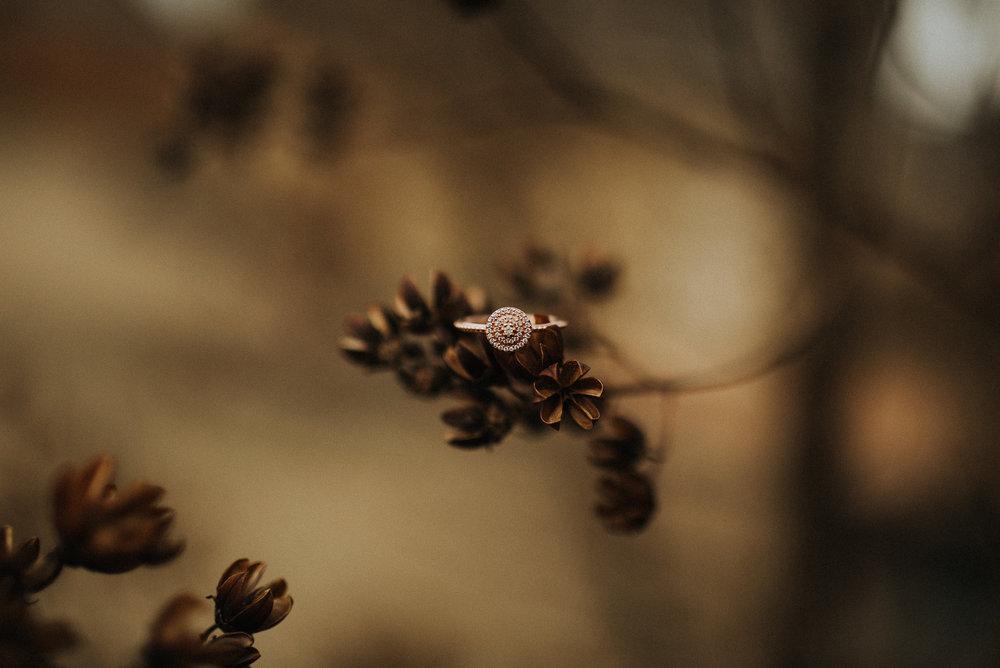 ringshot.hailymariephoto