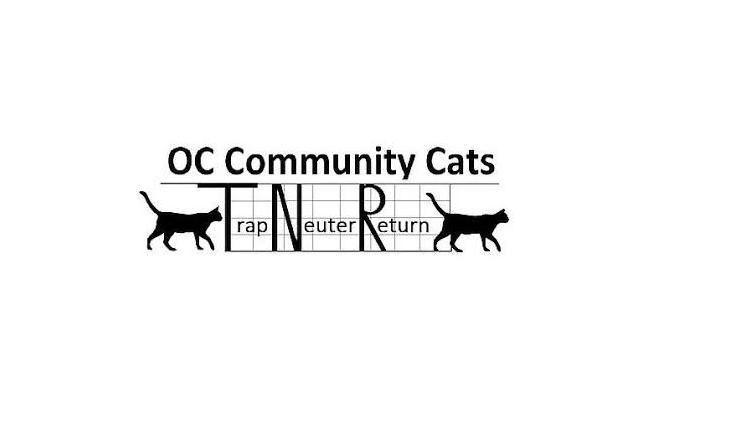 OC comm cats 2.png