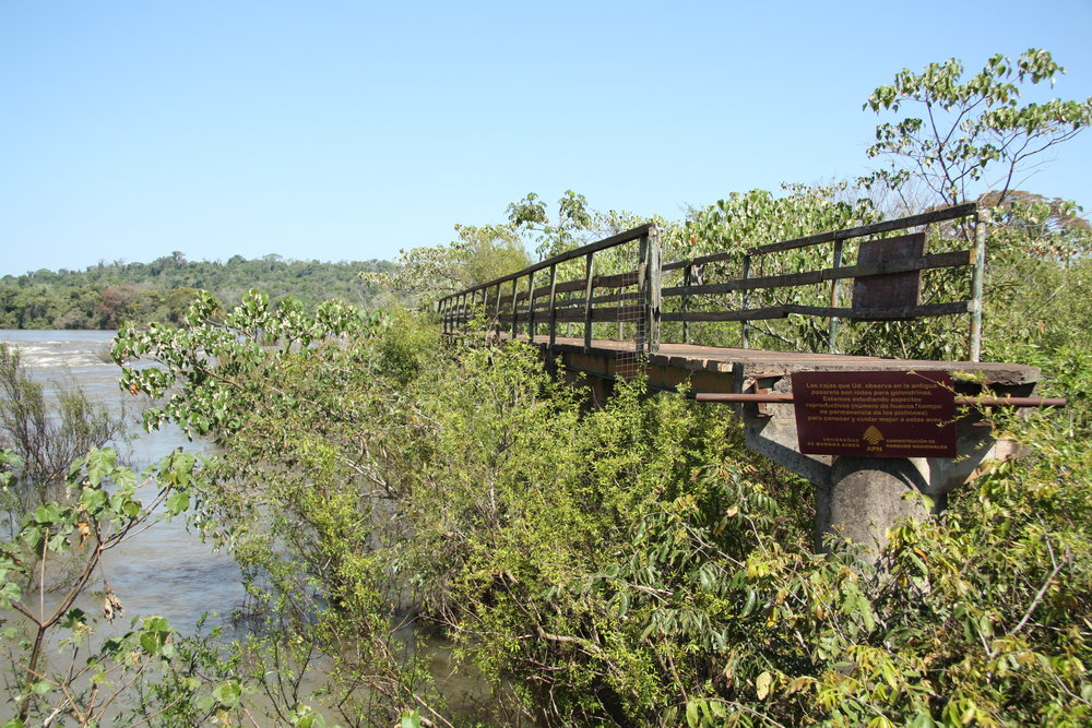 Iguaze broken catwalk