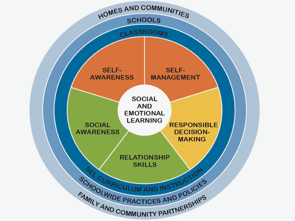 social & emotional learning - A definition: the process through which children and adults understand and manage emotions, set and achieve positive goals, feel and show empathy for others, establish and maintain positive relationships, and make responsible decisions. - CASEL