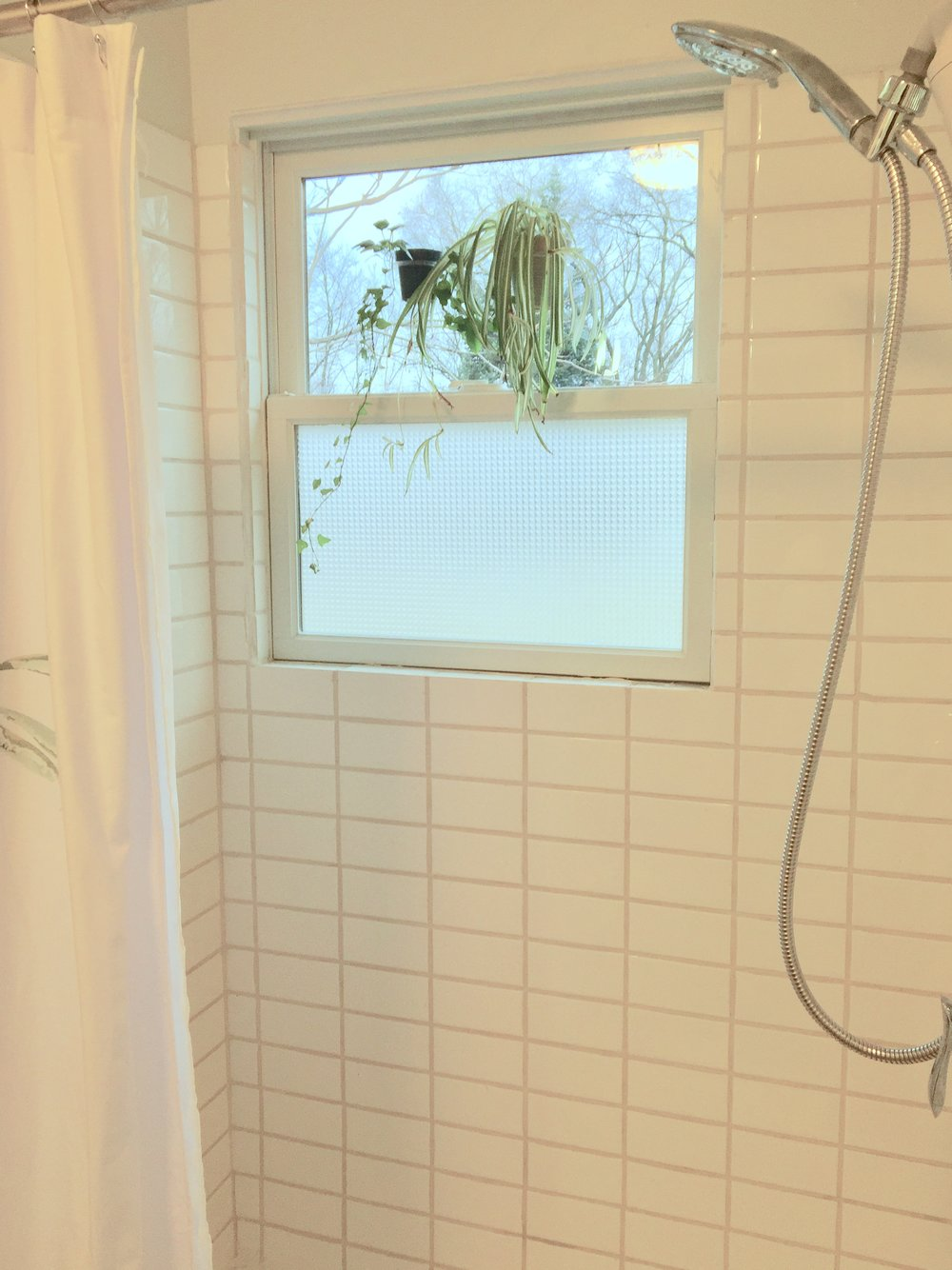 shower stall close.jpg