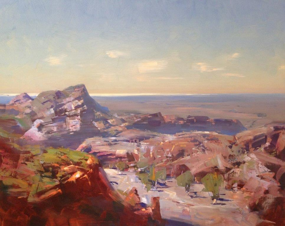 Musgrave-Evans 40550 Towards Lake Frome 153x122cm.jpg
