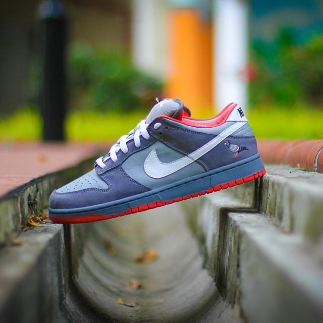 official photos 534ac 1711b Nike Pigeon Dunk — STAPLE DESIGN