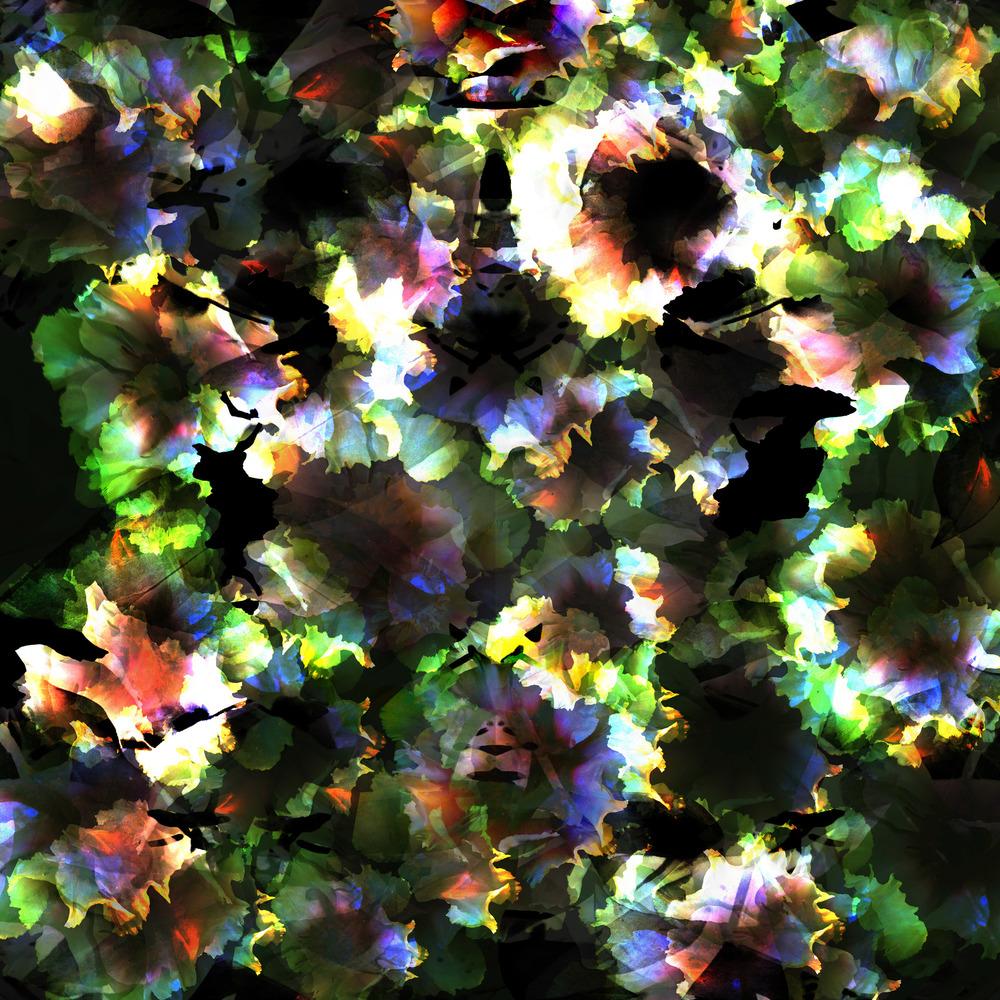 floral dodgewebsite.jpg