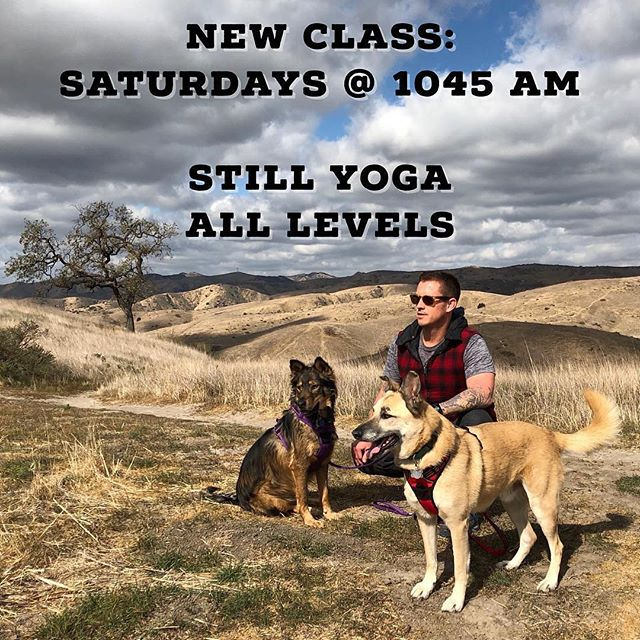 I'm adding a new class to my weekly schedule starting tomorrow. Saturdays @ 10:45 am - Noon. Still Yoga in Silverake. ☀️ #stillyoga #silverlakeyoga #silverlake #layoga ... Repost from @yogibass . ... #yogalosangeles #losangeles #yogaclass #yogateacher #yogalife #yogalove #yogastudio