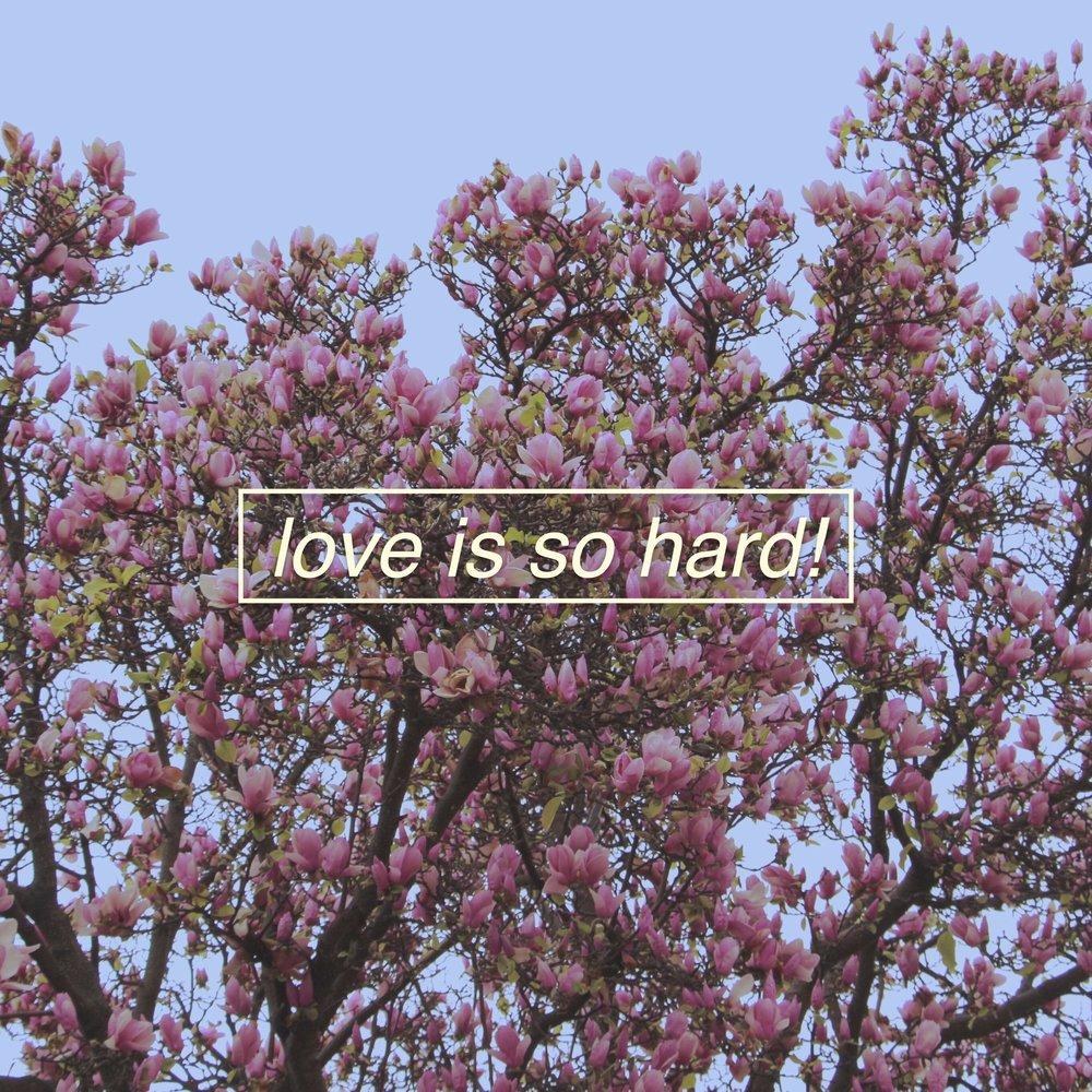 love is so hard.jpg