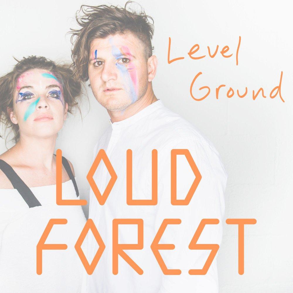 level ground.jpg