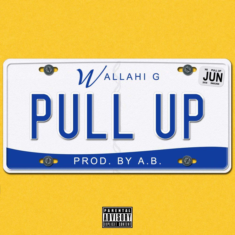 pull up2.jpg