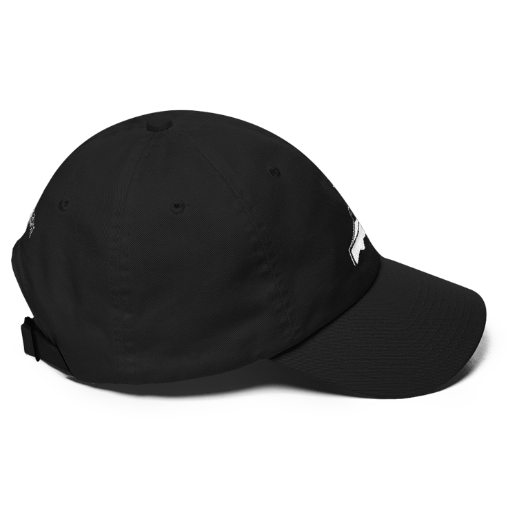 HC-Cake-Top-Side-Black-1.png