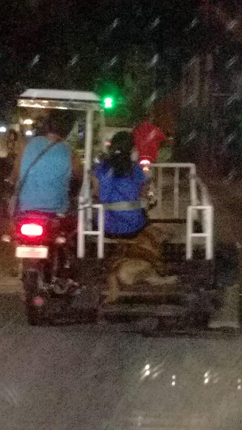 Doggo ride