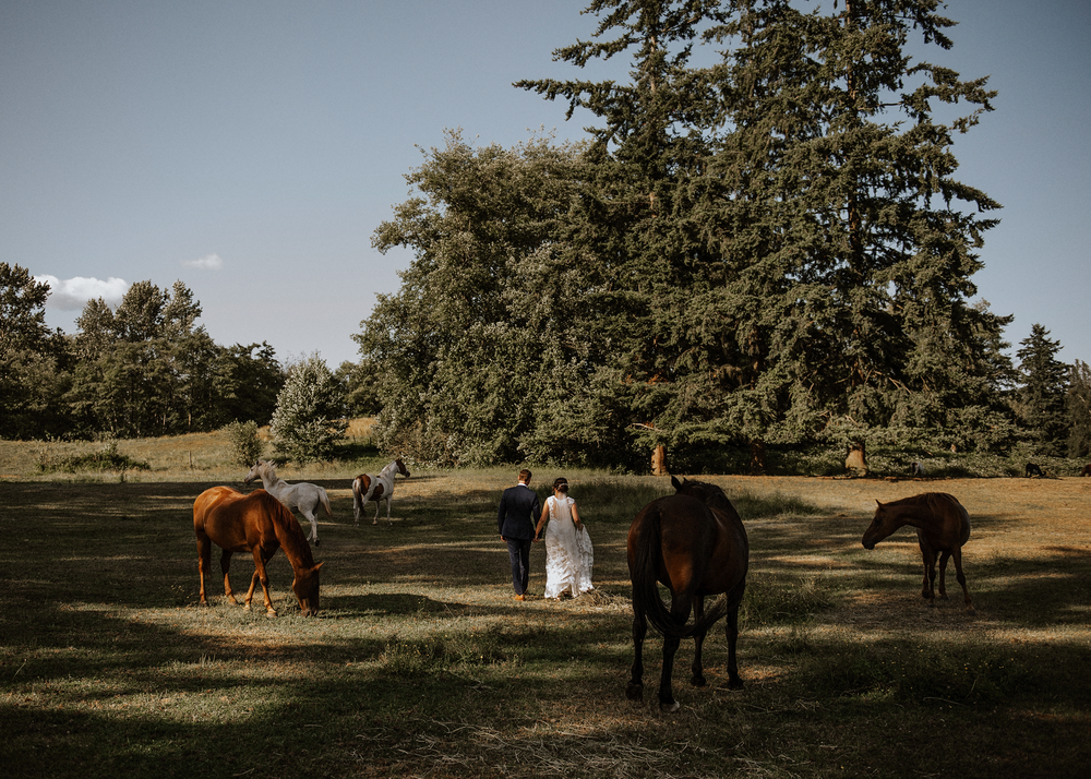 048-kaoverii-silva-KM-prewedding-vancouver-photography-webbs-holiday-acres-horse-ranch-blog.png