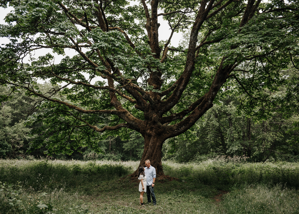 004-kaoverii-silva-ht-prewedding-vancouver-photography-redwood-park-1.png