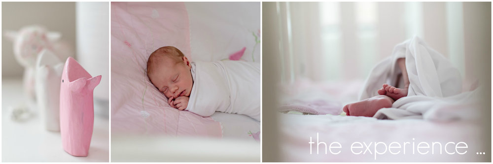 Clare Kinsey Photography - the experience