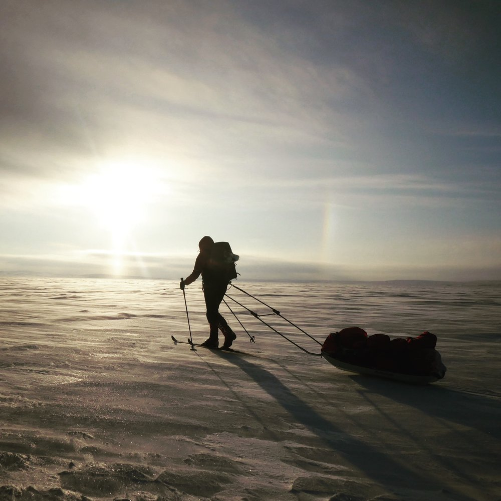 Lucy_Shepherd_Arctic