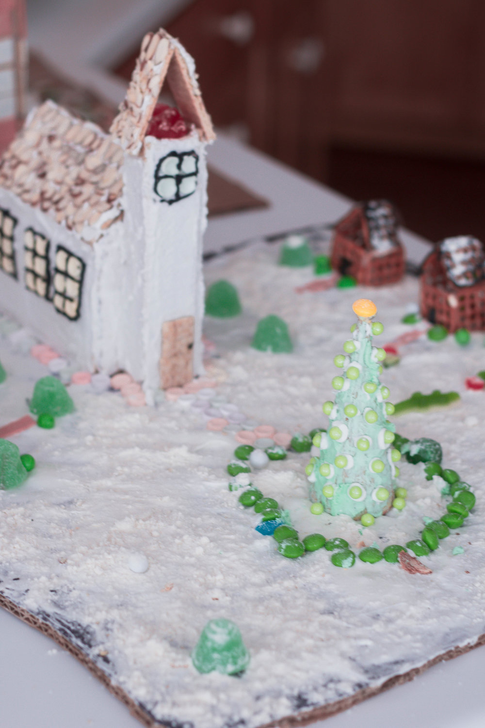 Gingerbread Houses-16.jpg