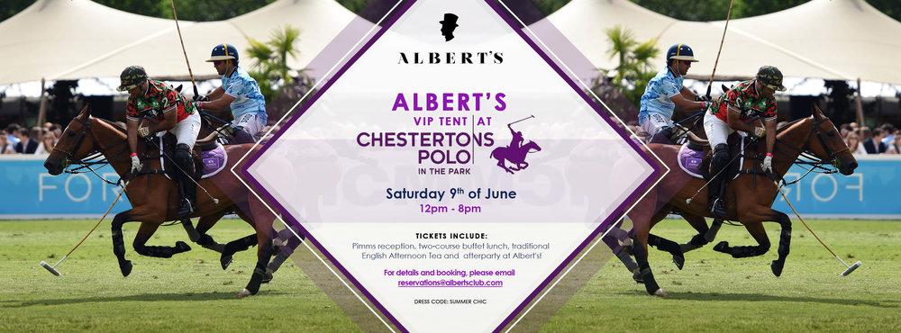 Albert's Polo in the Park (2).jpg