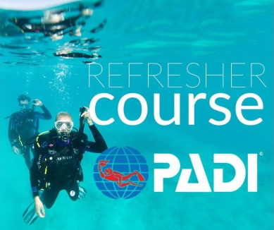 PADI Refresher Course official (Copy)-500x500.png