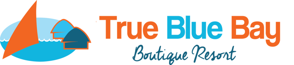 true-blue-horizontal vector logo.png