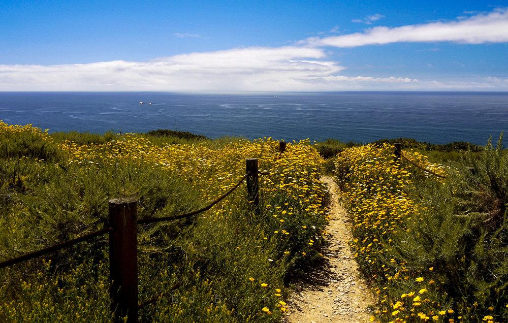 Side By Side  Location: Palos Verdes, CA, USA