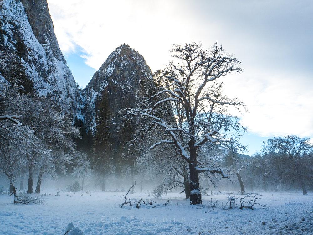 A Perfect World  Location: Yosemite, California, USA