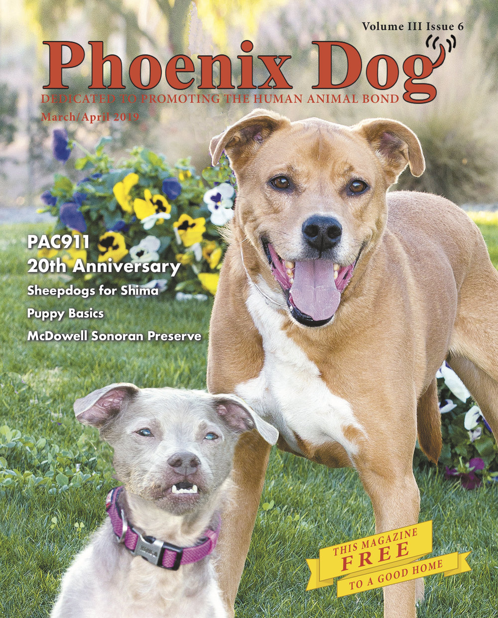Phx Dog March April 2019 cover.jpg