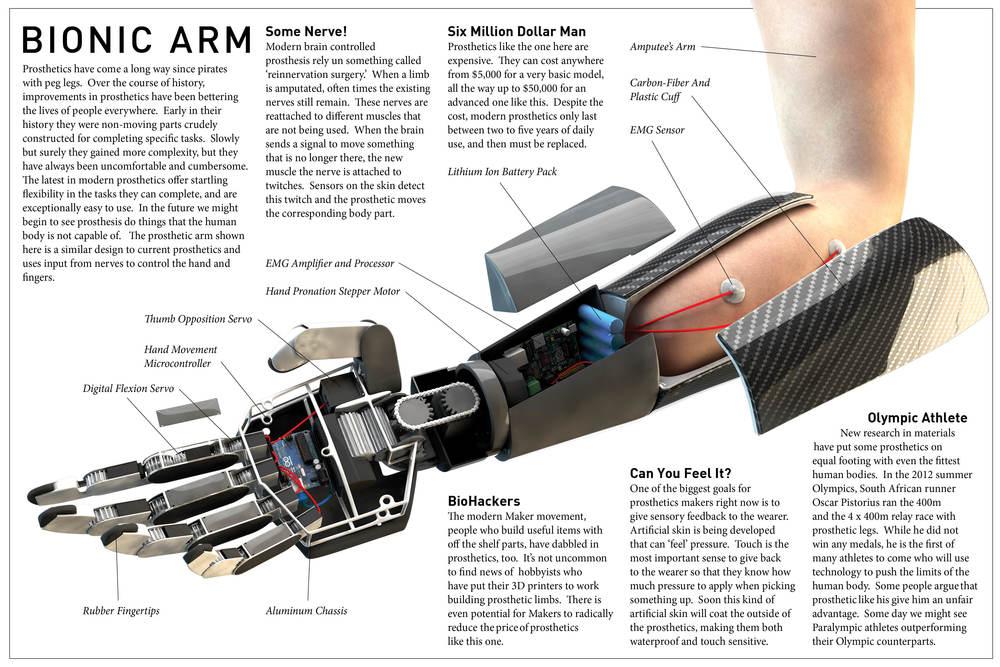 BionicArmFullText3Final.jpg