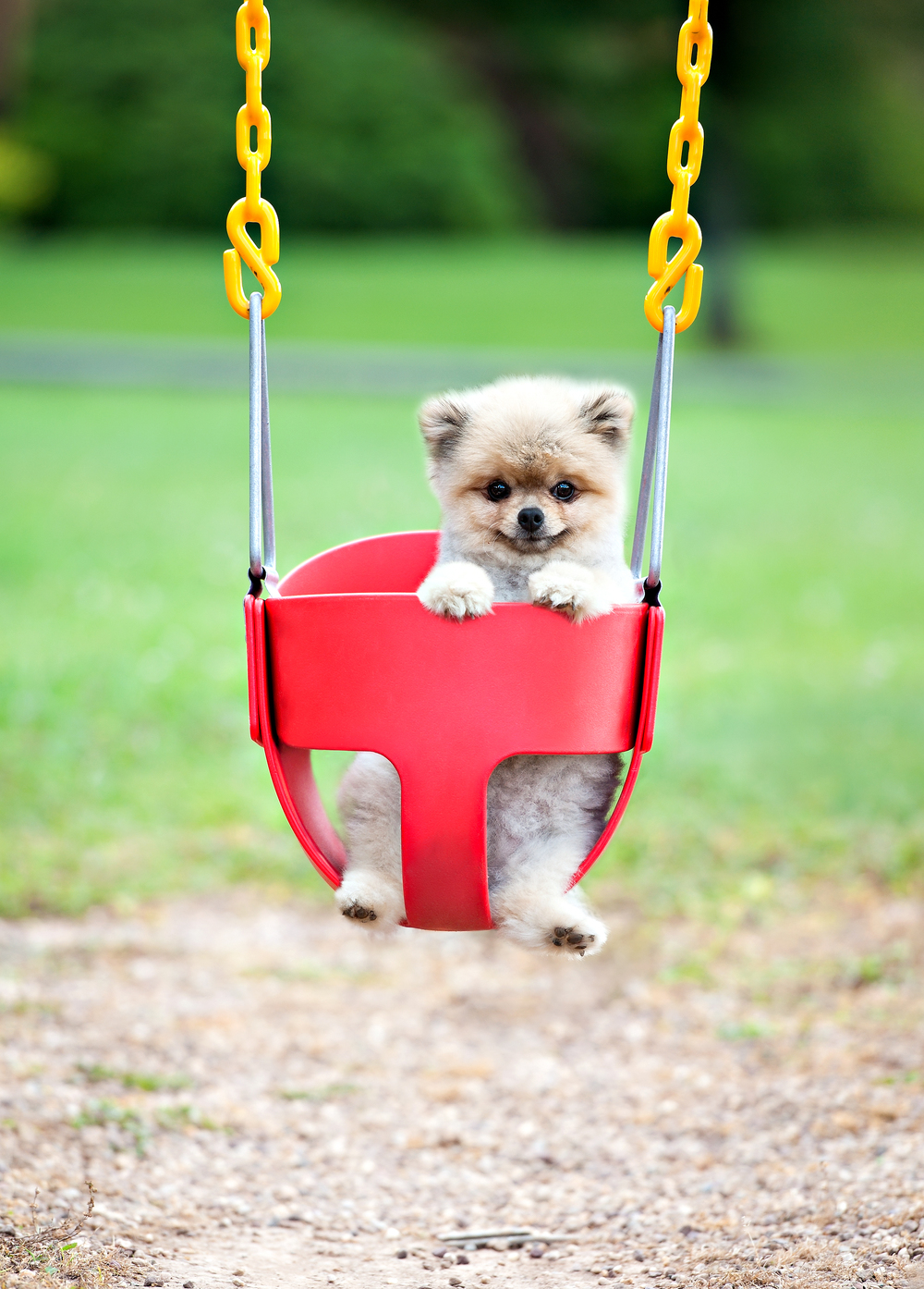 tex in swing.jpg