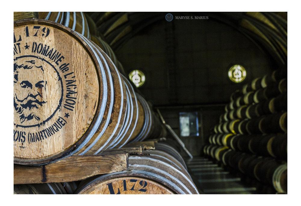 Distillerie Clement, Le Francois, Martinique. Août 2017.