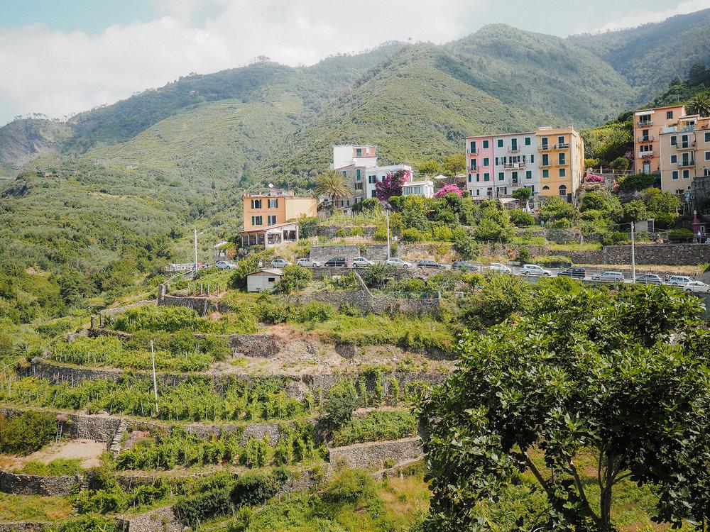 Cinque-Terre-Italy-7.jpg