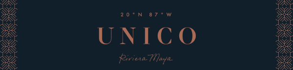 comprehensive brochure on unico property - details