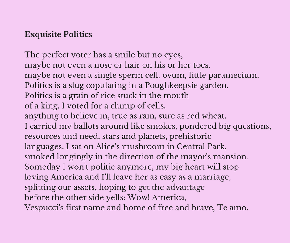 Exquisite Politics by Maureen Seaton and Denise Duhamel