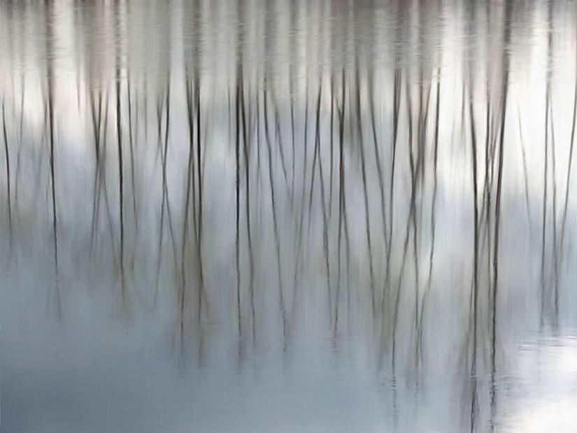 Serenity-sm.jpg